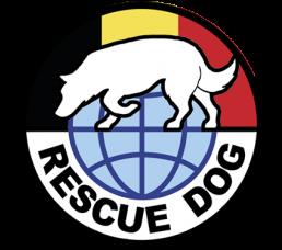 Rescue Dog Belgium : les équipes de secours cynophiles belges